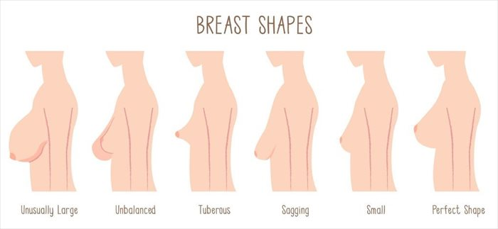 you can control your breast shape