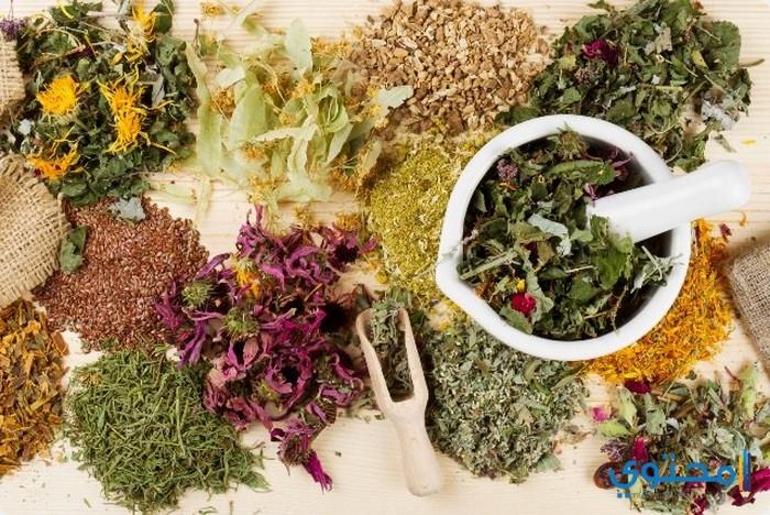 طرق سهلة تكبير القضيب بالاعشاب الطبيعية